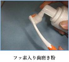 フッ素入り歯磨き粉